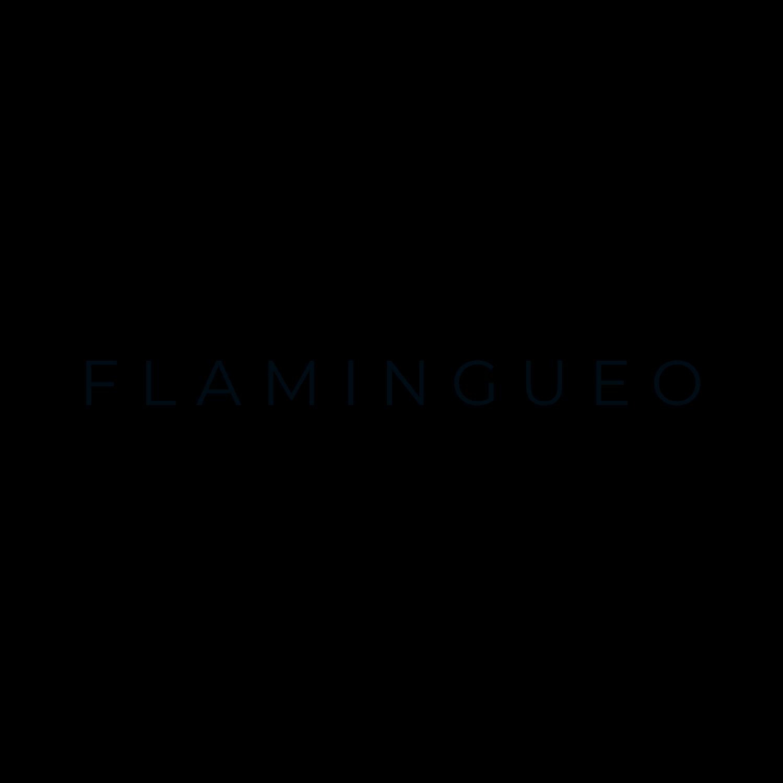 flamingueo 2